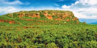 Kakadu National Park Day Tour image 3