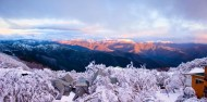 Ski Packages - Mt Buller Snow Day Tour image 2