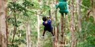 Ziplining - TreeTop Challenge Tamborine Mountain image 2