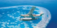 Scenic Flight - Reef and Whitehaven Scenic - Air Whitsunday image 3