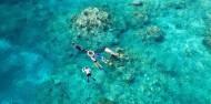 Reef Boat Day Trip - Aqua Quest image 3