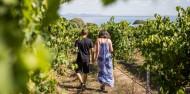 Food & Wine Tour - Around The Bay image 2
