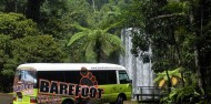 Barefoot Tours - Waterfall Day Tour image 3
