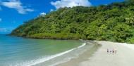 Daintree Rainforest & Cape Tribulation Tour image 1