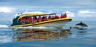 Bruny Island Cruises image 2