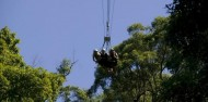 Giant Jungle Swing - AJ Hackett image 4