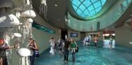 Cairns Aquarium image 3