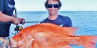 Reef Fishing - Cairns Reef Fishing Charters image 1