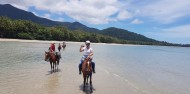 Horse Riding - Cape Tribulation Horse Rides image 1