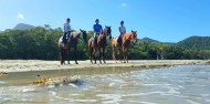 Horse Riding - Cape Tribulation Horse Rides image 3