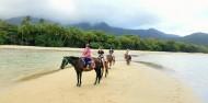 Horse Riding - Cape Tribulation Horse Rides image 4