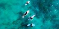 Surfing Surfers Paradise - Cheyne Horan School of Surf image 3