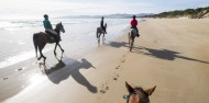 Horse Riding - Cradle Mountain image 8
