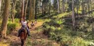 Horse Riding - Cradle Mountain image 5
