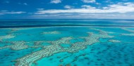 Great Barrier Reef Day Trip - Cruise Whitsundays image 5