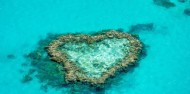 Great Barrier Reef Day Trip - Cruise Whitsundays image 3