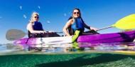 Kayaking - Dolphin & Stradbroke Island Tour image 4