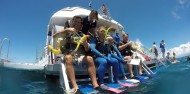 Reef Fly & Cruise Combo - Down Under Cruise & Dive image 6