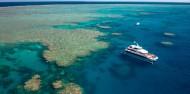 Reef & Cape Tribulation Rainforest Combo image 7