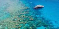 Reef Boat Day Trip - Dreamtime Dive & Snorkel image 1