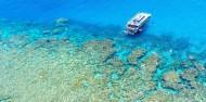 Reef Boat Day Trip - Dreamtime Dive & Snorkel image 4