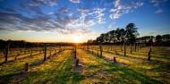 Food & Wine Tour - Mornington Peninsula image 1