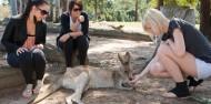 Lone Pine Koala Sanctuary & River Cruise image 3