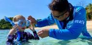 Frankland Islands - Frankland Islands Reef Cruises image 7