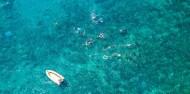 Frankland Islands - Frankland Islands Reef Cruises image 8