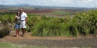 Atherton Tablelands Food Wine & Rainforest Tour - Food Trail Tours image 5