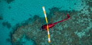 Reef Fly & Cruise Combo - Downunder Dive image 4