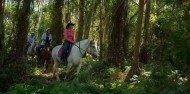 Green Island & Horse Riding Combo image 7
