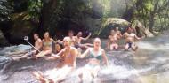 Uncle Brians - Tablelands & Waterfalls Tour image 3