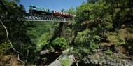 Skyrail & Kuranda Railway Combo image 4