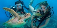 Learn to Dive Course - 4 & 5 Days - Divers Den image 4