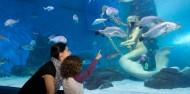 Melbourne Sea Life Aquarium image 5