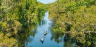 Noosa Everglades - Canoe & River Cruise image 4