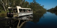 Noosa Everglades - BBQ Lunch River Cruise image 1