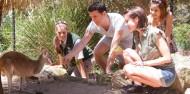Taronga Zoo Guided Tour - Wild Australia Experience image 1