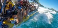 Cape Tribulation 2 Trips Deal - Ocean Safari & Ocean Rafting image 2