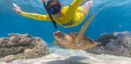Cape Tribulation 2 Trips Deal - Ocean Safari & Ocean Rafting image 4