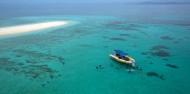 Cape Tribulation 2 Day Combo Tour - Rainforest & Reef Snorkel image 6
