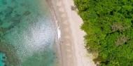 Cape Tribulation 2 Trips Deal - Ocean Safari & Ocean Rafting image 5