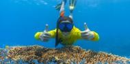 Ocean Safari image 6