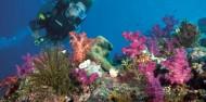 Reef Boat Day Trip - Port Douglas - Poseidon image 4