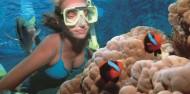 Reef Boat Day Trip - Port Douglas - Poseidon image 5