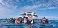 Liveaboard Dive Boat -  Pro Dive image 1