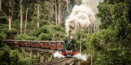 Puffing Billy & Blue Dandenongs image 1