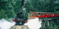 Puffing Billy & Blue Dandenongs image 3