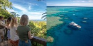 Reef & Cape Tribulation Rainforest Combo image 1
